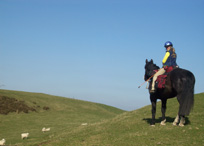 Take, Horse Riding, Holidays, With Your Horse Adventures, Powys, UK